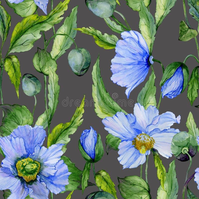 美丽的蓝色鸦片开花与在深灰背景的绿色叶子 无缝花卉的模式 多孔黏土更正高绘画photoshop非常质量扫描水彩 向量例证