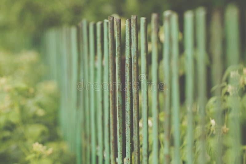 美丽的装饰生铁加工的篱芭的图象有艺术性的锻件的 金属栏杆关闭 库存图片