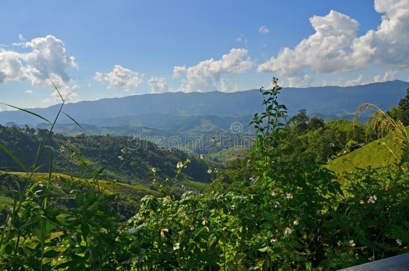 美丽的谷和山在明亮的阳光下 免版税库存照片