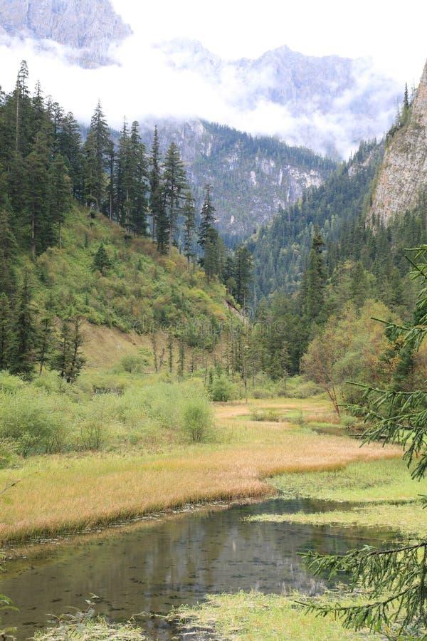美丽的谷在四川中国九寨沟国家公园  免版税库存图片