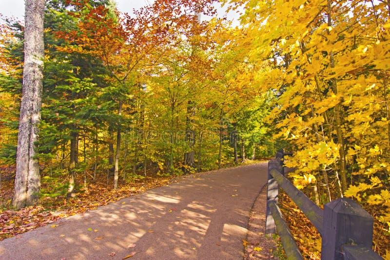 美丽的走道与秋天颜色在密执安美国 库存图片
