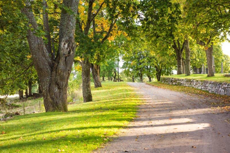 美丽的走道 库存图片