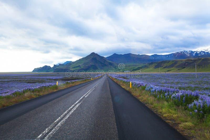 美丽的路在冰岛 免版税库存图片