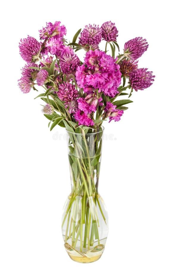 美丽的野花花束 在花瓶的野花 免版税库存图片