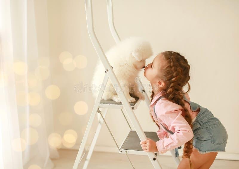 美丽的金发小女孩,笑脸有趣,拥抱和玩小狗日本Spitz 儿童和 库存图片