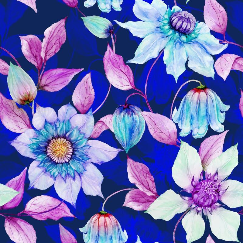美丽的铁线莲属在上升的枝杈开花反对深蓝色的背景 无缝花卉的模式 多孔黏土更正高绘画photoshop非常质量扫描水彩 向量例证