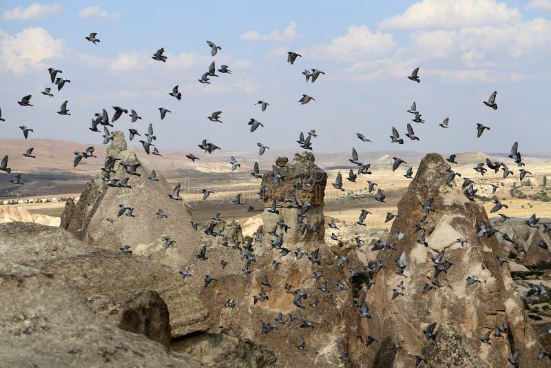 美丽的锥体岩石在卡帕多细亚土耳其 免版税库存照片