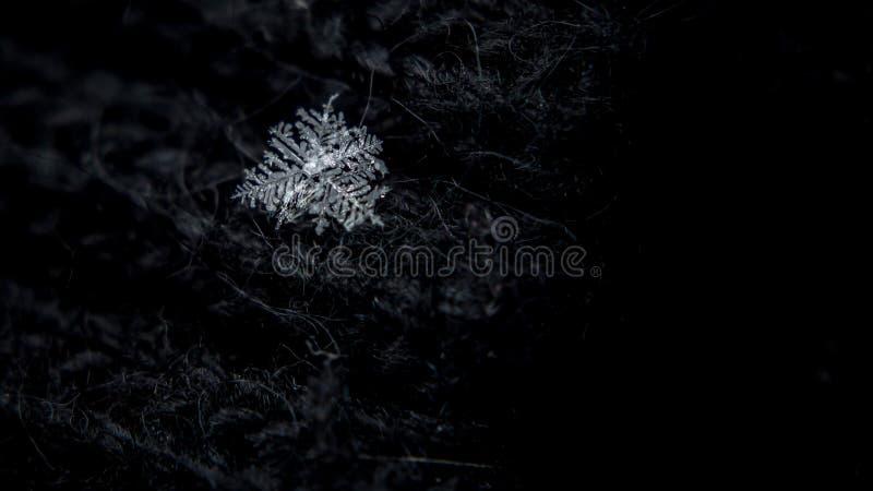 美丽的雪花,一块唯一冰晶在冬天,通过大气落作为雪 通常在发光六角水晶塑造, 免版税库存照片