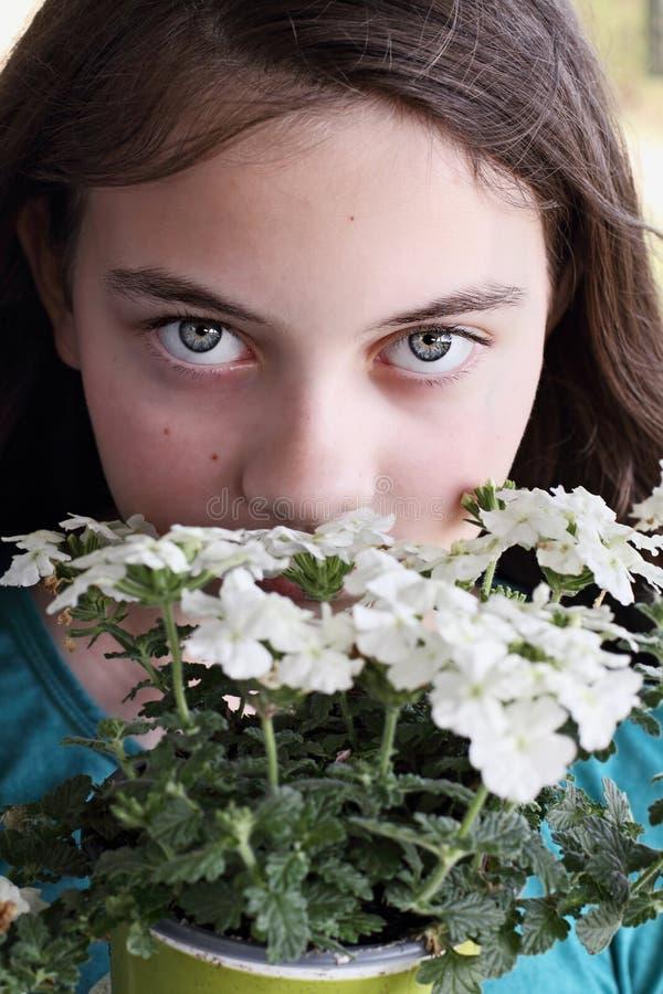 美丽的青少年女孩嗅到的马鞭草属植物花 库存图片