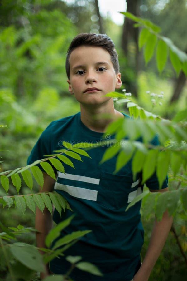 美丽的青少年的男孩画象在森林里 免版税库存照片