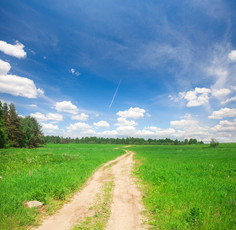 美丽的领域和路 免版税库存照片