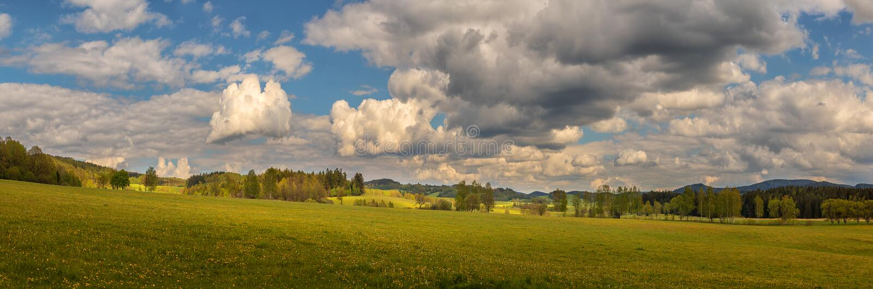 美丽的风景,草地,树木,森林 免版税图库摄影