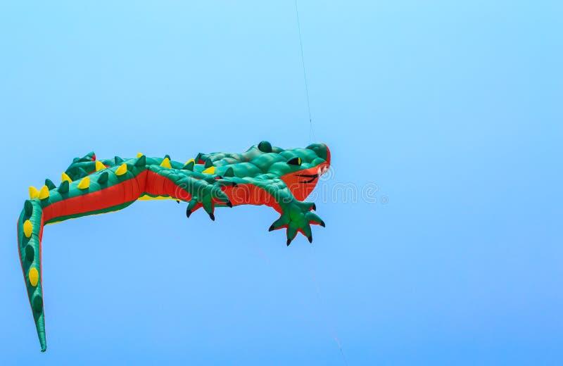 美丽的风筝 免版税库存照片