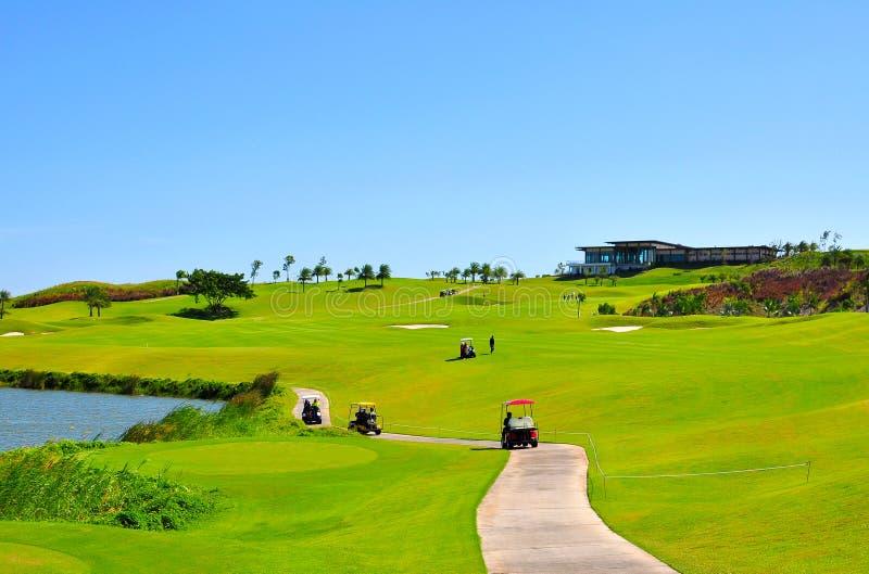 美丽的高尔夫球场自然绿色草皮scernery 免版税图库摄影