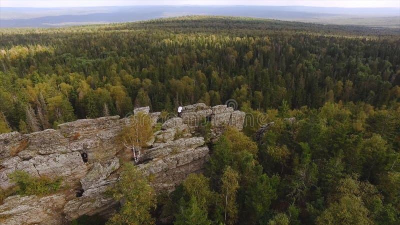 美丽的高石岩石在天空蔚蓝下的绿色森林里 英尺长度 人身分顶视图在岩石的以厚实的绿色 库存图片