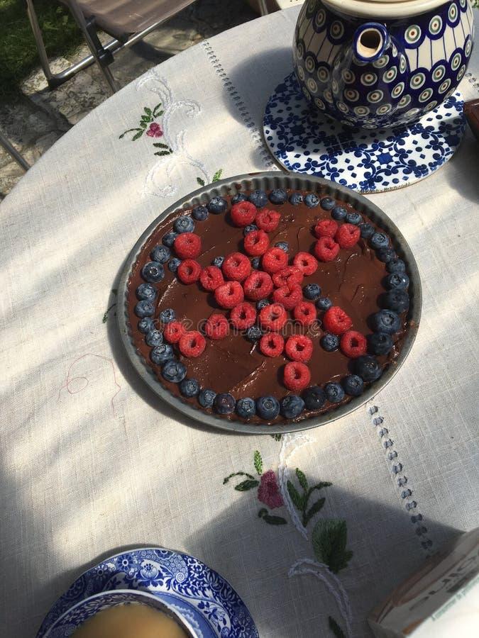 美丽的鲜美未加工的素食主义者蛋糕 免版税库存照片