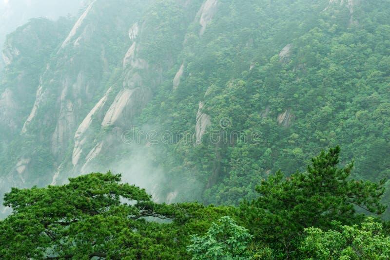 美丽的黄山在中国 免版税库存图片