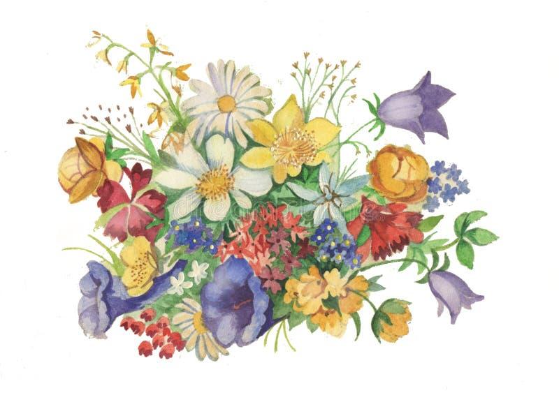 美丽的水彩五颜六色的花 向量例证