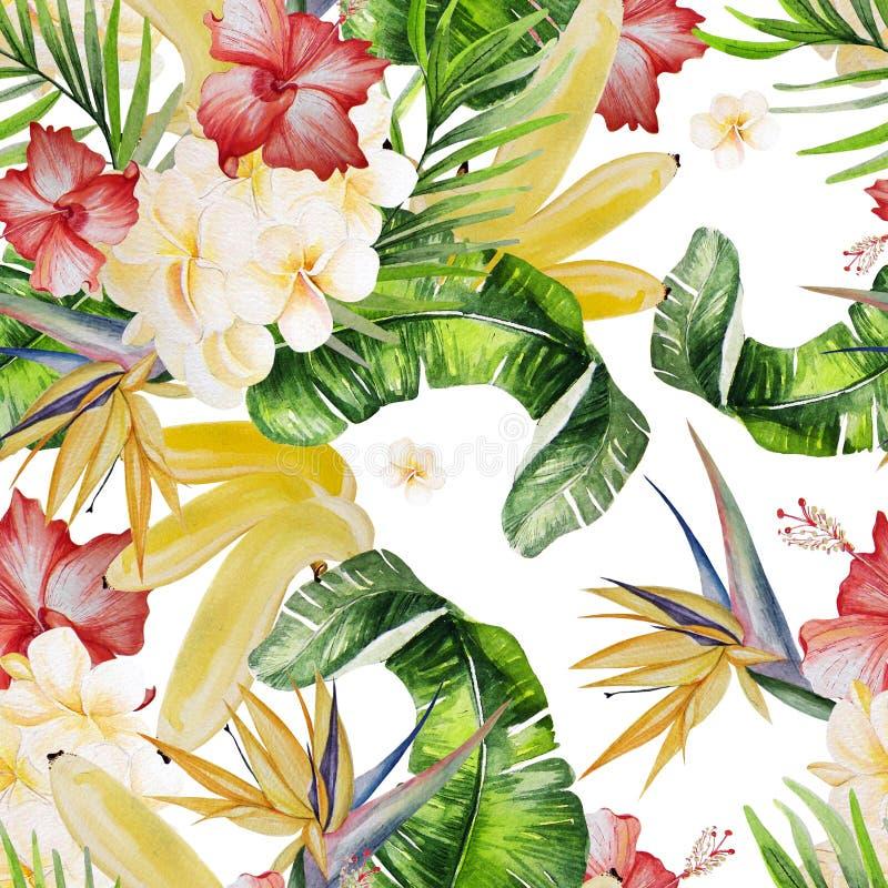 美丽的水彩无缝的热带密林花卉样式bac 皇族释放例证