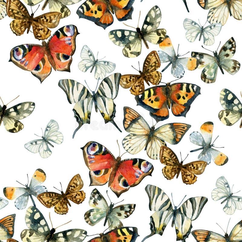 美丽的水彩蝴蝶无缝的样式 向量例证