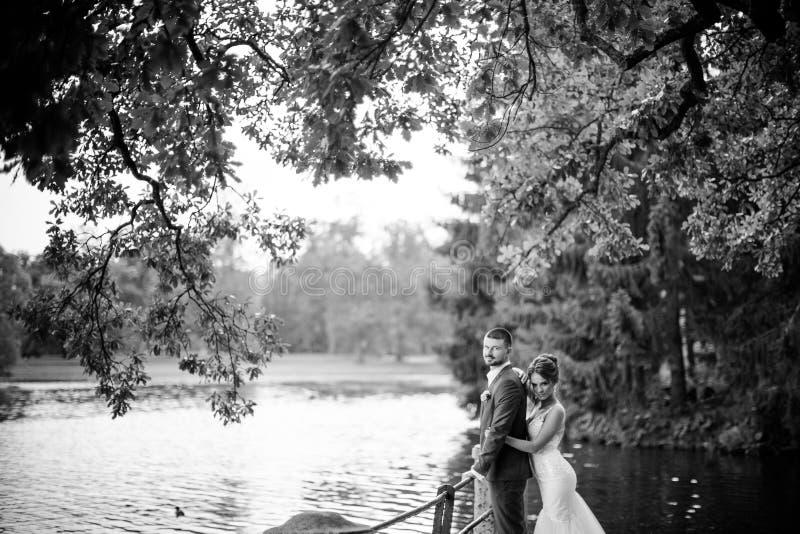 美丽的年轻摆在湖背景的婚礼夫妇、新娘和新郎 免版税库存图片