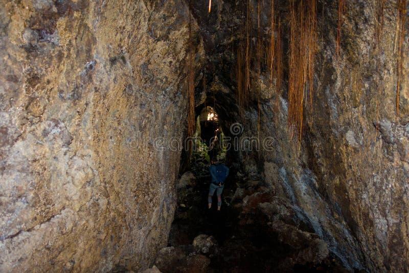 美丽的黑暗的洞在朗伊托托岛,由火山的形成做成在新西兰 免版税库存照片