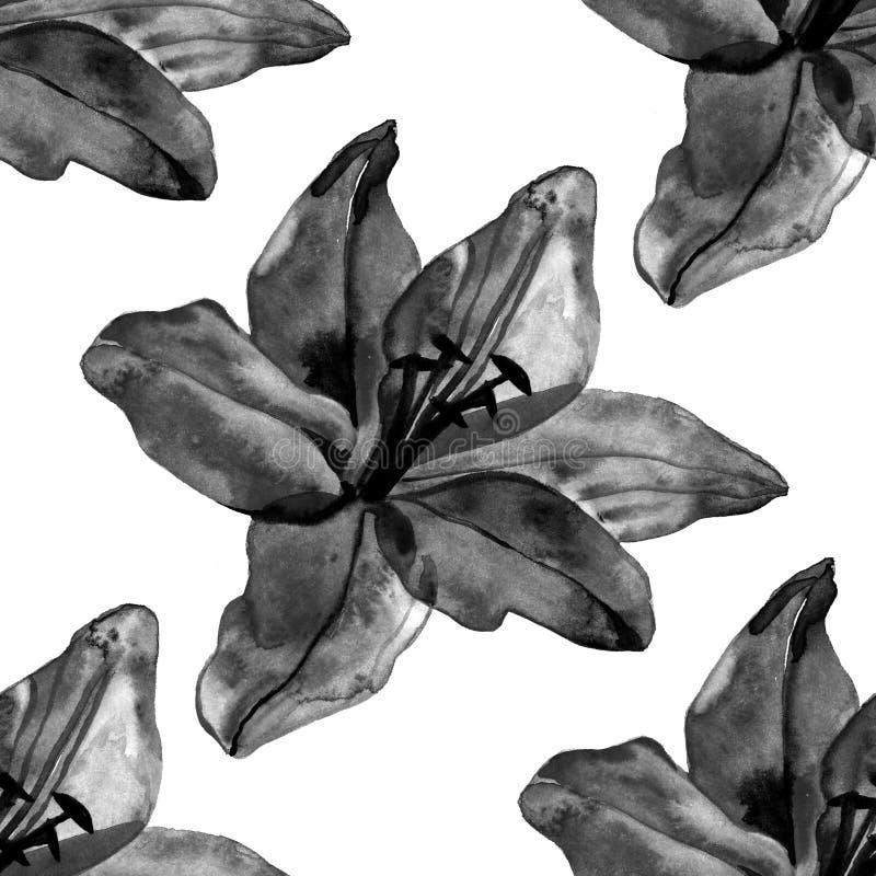 美丽的黑百合开花在白色背景的无缝的样式 向量例证