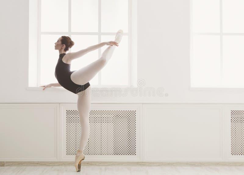 美丽的ballerine在蔓藤花纹芭蕾位置站立 库存图片