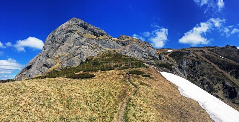 美丽的Ciucas山在罗马尼亚 库存图片
