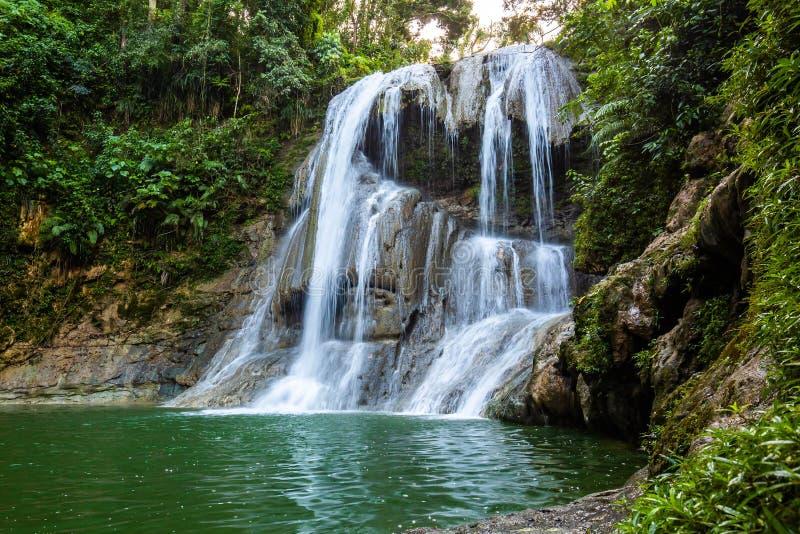 美丽的Gozalandia瀑布在圣・萨巴斯蒂安波多黎各 库存图片
