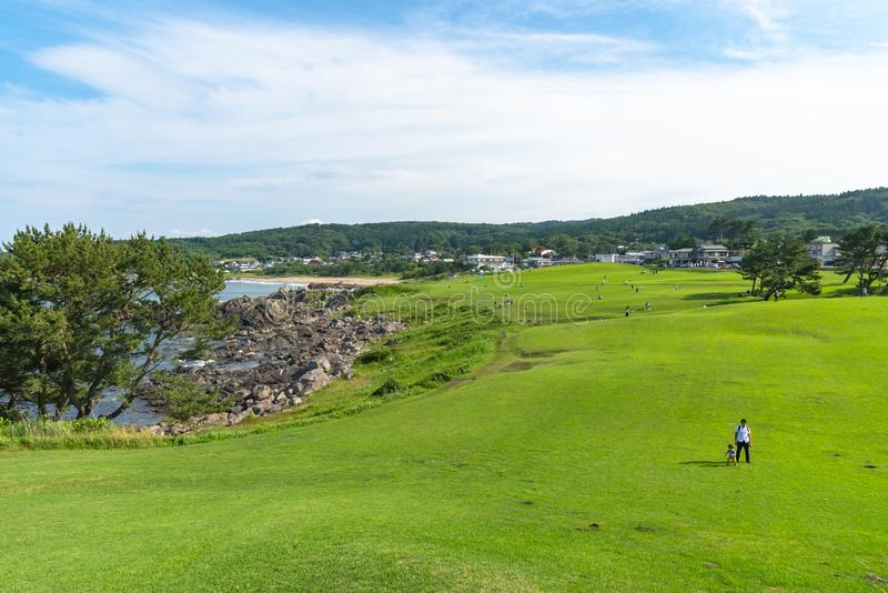 美丽的Tanesashi kaigan海岸海岸线包括含沙和多岩石的海滩,象草的草甸风景视图 库存图片