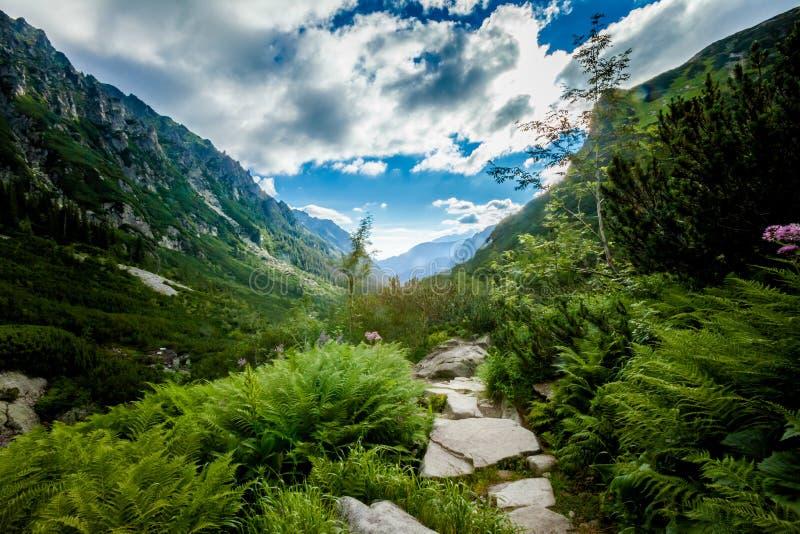 美丽的Tatry山风景五湖谷 免版税图库摄影
