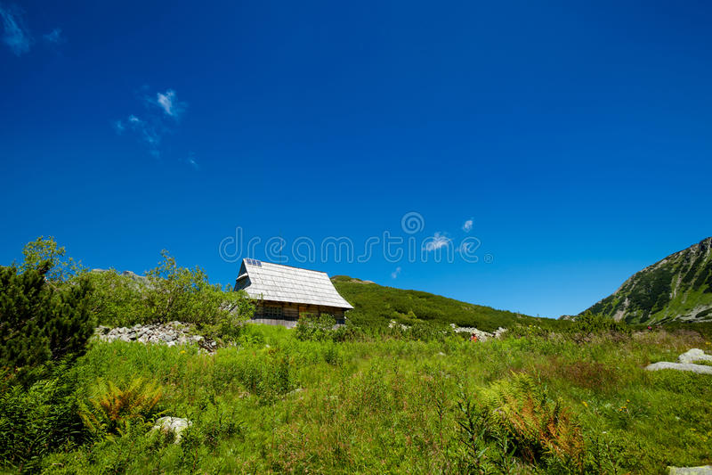 美丽的Tatry山风景五湖谷 库存照片