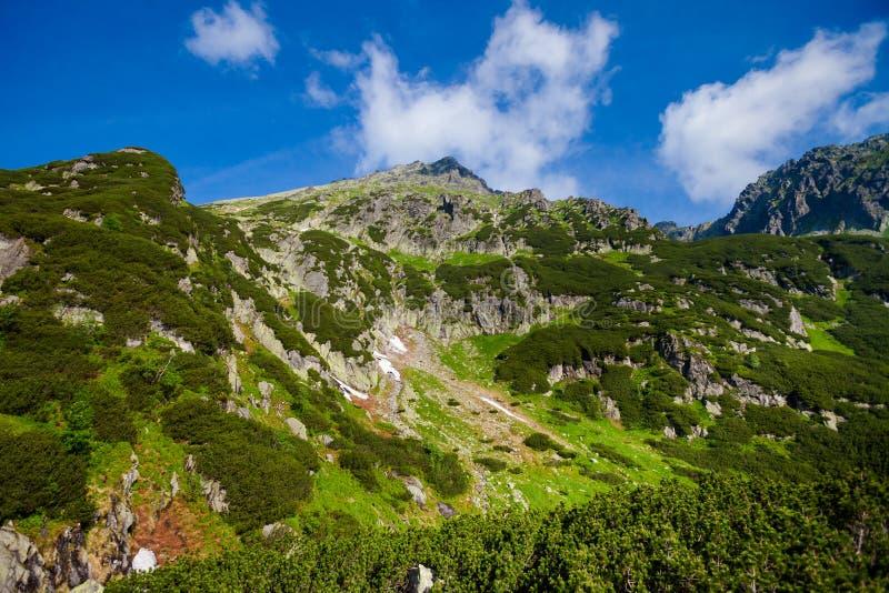 美丽的Tatry山风景五湖谷 图库摄影