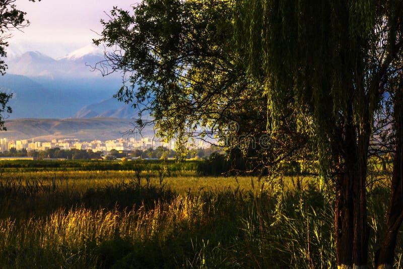 美丽风景在有天狮单山的比什凯克市 免版税图库摄影