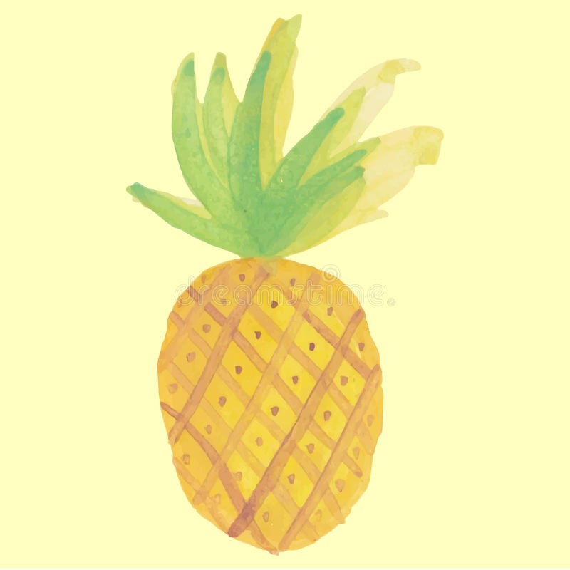 美丽,菠萝例证 免版税库存照片