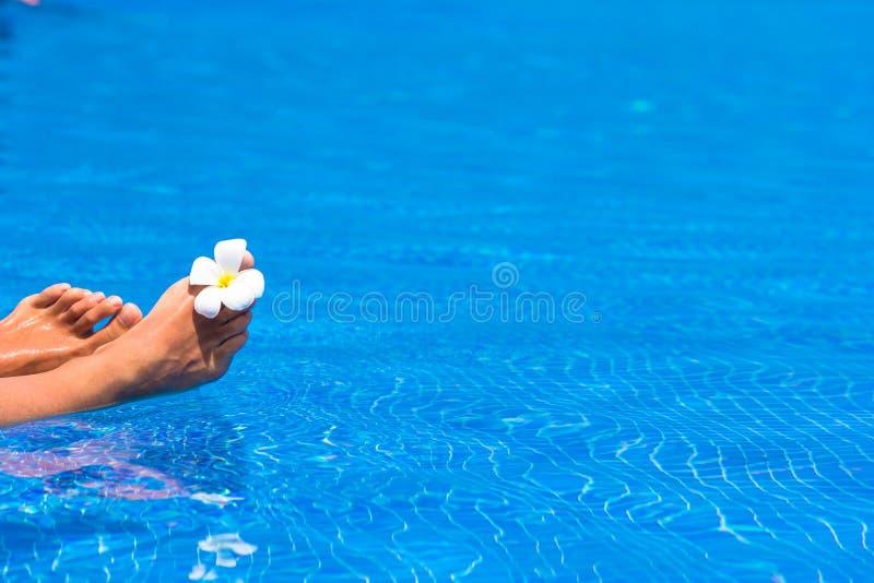 美丽pedicured女性脚和热带 免版税库存图片