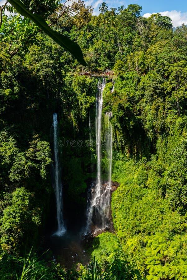 美丽Sekumpul瀑布在巴厘岛,印度尼西亚 免版税库存图片