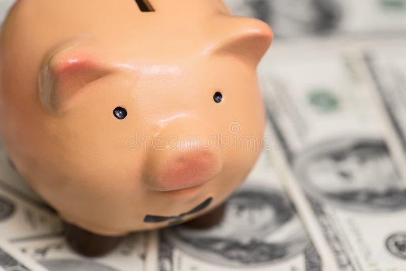 美元的桃红色存钱罐 企业、财务、投资、挽救和腐败概念 库存图片