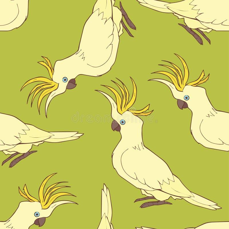 美冠鹦鹉样式 库存照片