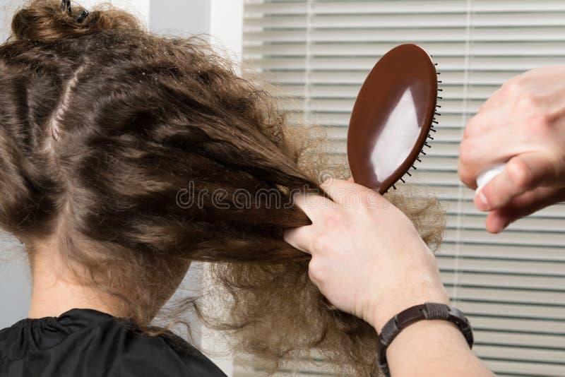 美发师分配女孩的头发锁,梳和创造的一种整洁的发型 库存图片