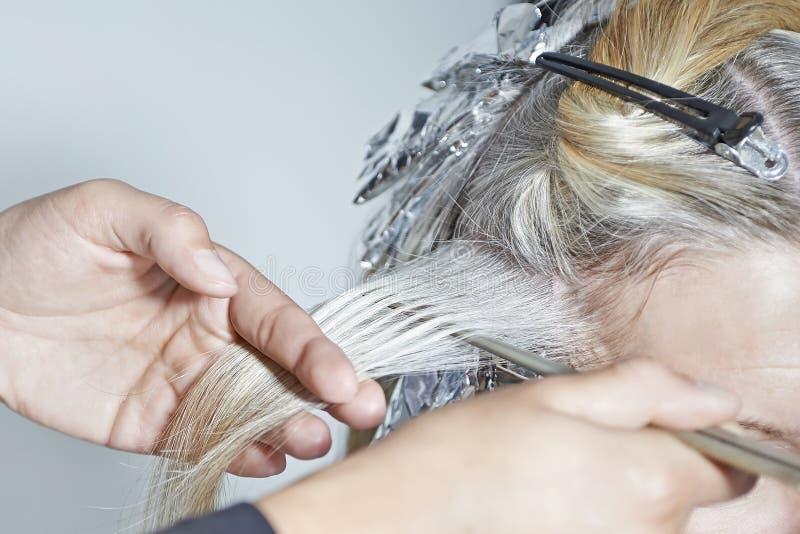 美发师在工作 库存图片