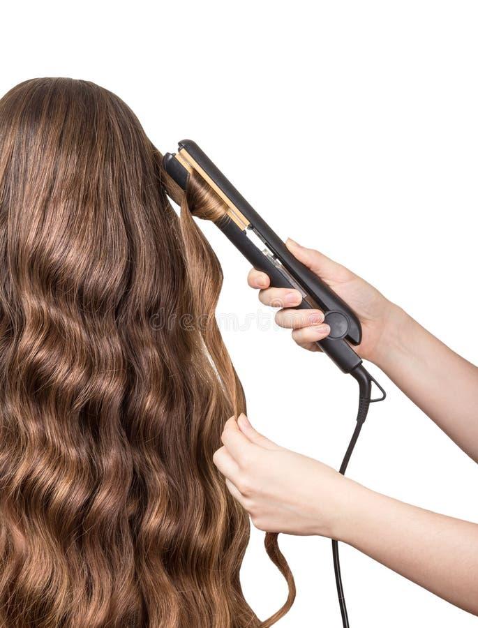 美发师在白色做被隔绝的卷曲长的棕色头发 库存图片
