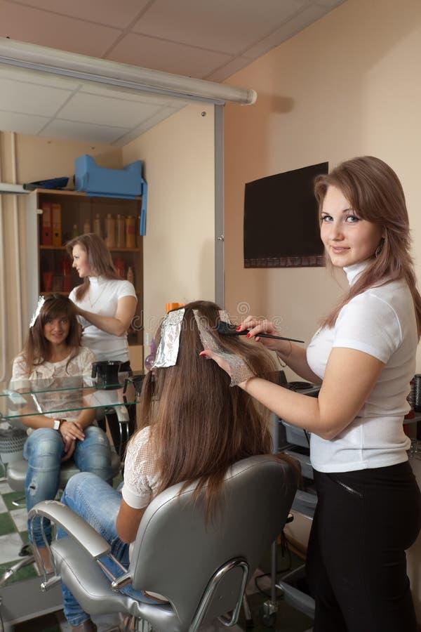 Download 美发师染料头发 库存图片. 图片 包括有 方式, 染料, beauvoir, 颜色, 头发, 客户, 发型 - 22355957