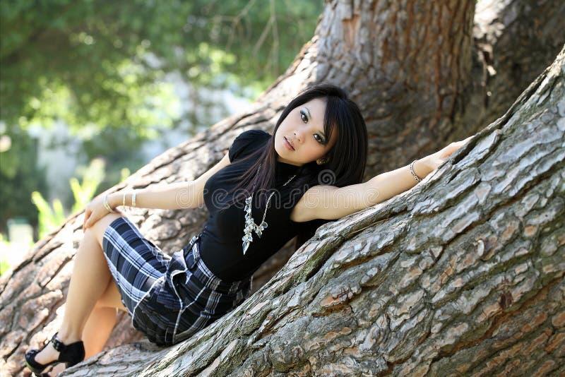 美国亚洲人斜倚的裙子结构树妇女年&# 免版税图库摄影