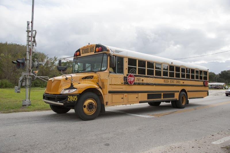 美国公共汽车学校 库存图片