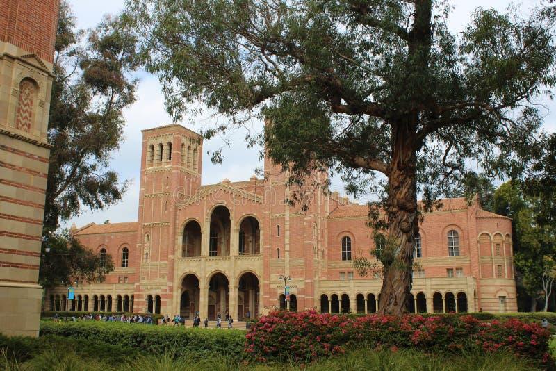 美国加利福尼亚大学洛杉矶加州大学洛杉矶分校罗伊斯霍尔 免版税库存图片
