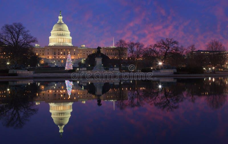 美国国会大厦被阐明的圣诞树DC 库存图片