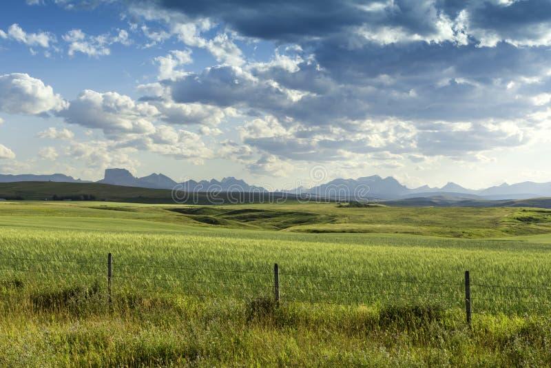 美国国家(地区)农场 图库摄影