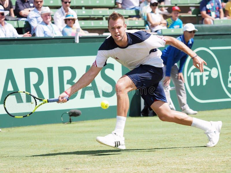 美国在戴维斯杯期间的网球员杰克・索克选拔反对伯纳德・托米奇 免版税图库摄影